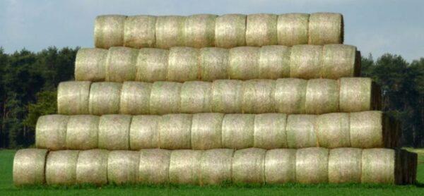 siatka-rolnicza-baloty